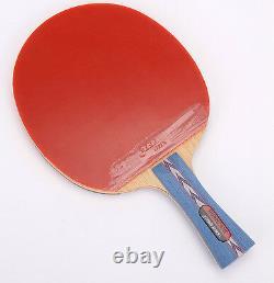 Dhs Hurricane #2 N ° 2 Paddle De Tennis De Table / Chauve-souris, Raquette Pingpong, Nouveau