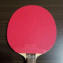 Papillon De Raquette De Tennis De Table Gergely Avec La Boîte